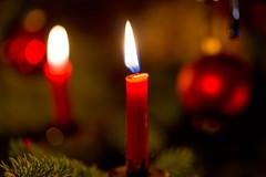 red beeswax candles (ToDoe) Tags: beeswaxcandle candels candle beeswax bienenwachs bienenwachskerzen red rot kugel christbaum christbaumkugel christmastree flame flamme kerzen chrismas weihnacht weihnachten