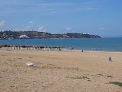 Beach, La Marsa.