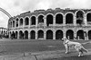 Arena di Verona (GiovanniZanotti) Tags: arena di verona streetphotography art architecture dog beautiful clouds people bw black white