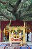 "PB140667-a (photozaki) Tags: india ""sujata kuti"" ""mahabohi temple"" ""mahabodhi mahavihara temple ""buddhist buddha buddhism ""bodhi tree"" bodhgaya gaya buddhist monk monks ashoka enlightenment ""vajrasan diamond throne"""