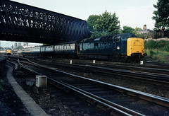 In the last summer of Deltics on the East coast main line....and with Deltic 10 now shorn of it's nameplates.....55010 formerly The Kings Own Scottish Borderer Edinburgh-Kings Cross Holgate York 13-07-1981 (the.chair) Tags: 55010 edinburgherkings cross holgate york july 1981
