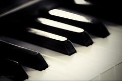 Sans paroles (Voyage Au delà d'un Regard) Tags: piano macro noirblanc nb