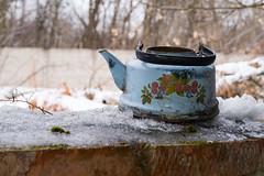 (Фото Москвы Moscow-Live.ru) Tags: парк лесопарк лосиныйостров заброшенное здание строение ветхое ветхий дом заброшенный чайник