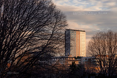 Grattacielo Pirelli, Milano (Obliot) Tags: milan trees january 2017 winter obliot arbe pirelli grattacielo skyscraper blue sunset orange street milano lombardia italia it screensaver mp