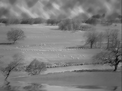Storm in the Mountains (garlandcannon) Tags: desaturation wind mountains flood trees sheep midgard before12000bce peninsulaofeurope