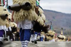 En camino - On way (javidurojimenez) Tags: joaldunal carnaval carnival folk folklore tradicion tradition rito rite ritual navarra españa spain ituren zubieta bidasoa hartza oso aurtitz ttuntturo cencerro cowbell