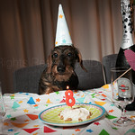 Ollie's 8th Birthday 14-08-2015 thumbnail