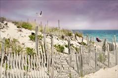 fourfinal (floralgal) Tags: ocean beach lbi southernnewjersey newjerseyshore longbeachislandnewjersey sandandsuf duskonlongbeachisland