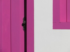 pink colonial (saudades1000) Tags: door pink window colors colonial rosa knob corderosa pirenopolis casinha piri colorido goias braziliancolonialarchitecture portaejanela