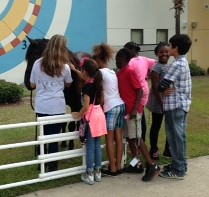 2015 - 4th & 5th Grade May 21, Seminole County with Wild Horse Rescue Center, Inc.