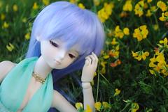 Axia (Sandricola Troleante) Tags: doll body hobby heat bjd custom dollfie dod collector balljointeddoll picis yosd minifee bjdoll dollsphotography dollhobby dailydoll bjdphotography
