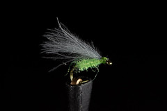 Greenfly (Masi Hast) Tags: flyfishing flytying
