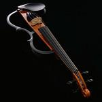 サイレントバイオリンの写真