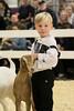 RAWF15 JSteadman 0094 (RoyalPhotographyTeam) Tags: sun cute kid royal goat 2015 rawf nov08