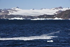 _DSC9173 (TC Yuen) Tags: glacier arctic greenland whales iceberg crusing floatingice polarregion greenlandeast