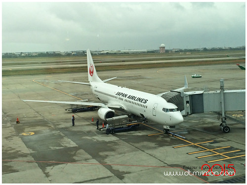 JAL飛機餐02.jpg