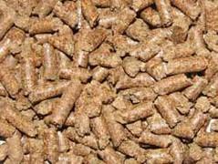 کنجاله انار (iranpros) Tags: انار دام خوراک استفاده جهت کنسانتره خوراکدام آنتیاکسیدان کنجاله کنجالهانارجهتاستفادهدرخوراکدام