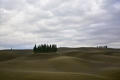 Today in Val d'Orcia [EXPLORE] (Antonio Cinotti ) Tags: italy landscape nikon italia hills tuscany cypress siena toscana valdorcia cypresses paesaggio colline cipressi sanquiricodorcia cipressini campagnatoscana d7100 nikon1685 valdorcia nikond7100