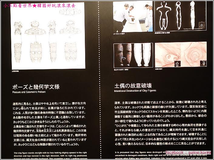 函館繩文文化博物館 (15).JPG