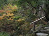 PB220917 (takafumionodera) Tags: japan olympus hakone omd em1 箱根 強羅 goura