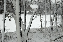 The Winter (series) (melleus) Tags: park trees winter white house snow cold nature weather cool seasons d200 snowfall imagemagick dcraw