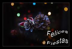 Felices Fiestas (Art.Mary) Tags: bodegón stilllife naturemorte navidad bokeh canon colors colores piñas merrychristmas joyeuxnoël luces lumière light