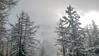 Snow Mountains (Andy.Gocher) Tags: andygocher europe france chamonix mountblanc snow trees white