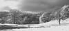 Ambleside 2 (Justin Ehrlich1) Tags: cpl dp2m foveon ir simulation infrared the lake district cumbria ambleside dp2 merrill