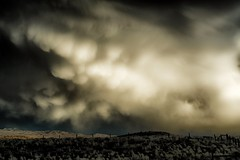 time to move on... (Alvin Harp) Tags: nevada january 2017 winterstorm billowyclouds dramaticclouds natureswonder nature sonyilce7rm2 fe24240mm mountains fence alvinharp