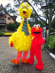 Big Bird and Elmo (meeko_) Tags: big bird bigbird elmo muppet monster sesamestreet characters buschgardenscharacters muppetcharacters sesamestreetsafarioffun busch gardens tampa africa buschgardens buschgardenstampa buschgardenstampabay buschgardensafrica christmas buschgardenschristmas themepark florida