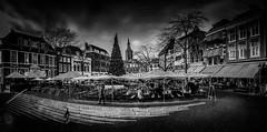 Grote Market (alan_eccleston) Tags: denhaag grote market den haag netherlands