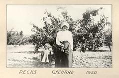 Anglų lietuvių žodynas. Žodis orchardists reiškia vaismedžiai lietuviškai.