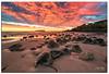 Fingal sunrise 24-7-16- (Jayde Aleman) Tags: sonya7rii landscapes jayde aleman sunrise fingalheads