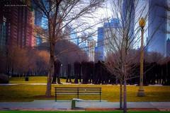 FOTO PREMIUM #chicago #chicagopix #grantpark #garden #TakingOverChooseChicago #jardim #quadros #casacor #decora #decoracao #decorar #decoracaodeinteriores #decorcasa #posters #posterart (helderpalermo) Tags: casacor chicagopix jardim decora takingoverchoosechicago chicago garden decoracao quadros posters grantpark decorcasa decoracaodeinteriores posterart decorar