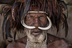 Dani tribe warrior, West Papua, Indonesia, ornamented with a pair of pork fangs, collar/tie made of small shells and a 'hat' made of feathers of various birds. Living with this tribe was like a trip back in time , since many of the traditions remain uncha (Joel Santos - Photography) Tags: instagram dani tribe warrior west papua indonesia ornamented with pair pork fangs collartie made small shells hat feathers various birds living this was like trip back time since many traditions remain unchanged c joel santos wwwjoelsantosnet
