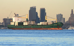 AS FELICIA in New York, USA. October, 2016 (Tom Turner - SeaTeamImages / AirTeamImages) Tags: cargo cargoship ship vessel green greenhull containership channel water waterway spot spotting bay tomturner asfelicia statenisland newyork nyc bigapple usa unitedstates marine maritime pony port harbor harbour transport transportation dusk brooklyn brooklynskyline