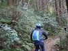 P1050415 (wataru.takei) Tags: mtb lumixg20f17 mountainbike trailride miurapeninsulamountainbikeproject