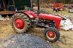 Old Tractor (Paul's Captures (paul-mashburn.artistwebsites.com)) Tags: tractor oldtractor johndeere bronco valentinemills fordfergusontractor ferguson