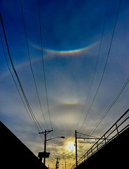 Supralateral Arc, Upper Tangent, Circumzenithal Arc, 22°Halo.. Wow!! Newark NJ! (briansudol1961) Tags: newjersey newark clouds sky uppertangent supralateral circumzenithal sunset sun halo