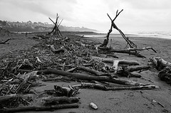 Driftwood I_bw (Joe Josephs: 2,861,655 views - thank you) Tags: california californialandscape joejosephs landscapes pacificcoasthighway travel travelphotography beaches californiabeaches californiacentralcoast coastal coastline fineartphotography landscapephotography outdoorphotography pacificocean shoreline storms water â©joejosephs2017 blackandwhitephotography blackandwhite ©joejosephs2017 driftwood seascapes stormyweather stormclouds