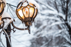 Winter selfie (Brînzei) Tags: bucurești fujifilmxpro1 fujinonxf35mmf14 mihaibravu muncii bokeh ice lamps mirror myself nofaces orange people reflection snow streetlighting trees winter ★