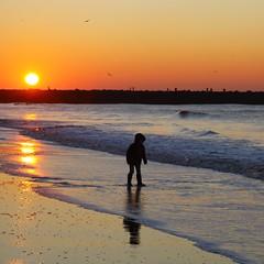 #project 365 #day21 (gabrielgs) Tags: winter kind chill zonsondergang strand sunset beach thenetherlands thehague scheveningen day21 project365