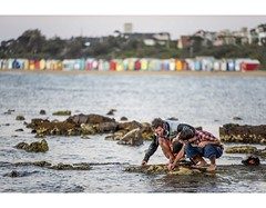 Treasure Hunt (red stilletto) Tags: brighton brightonbeach beachboxes bathingboxes friends rocks rockpools