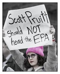 Scott Pruitt, Should NOT head the EPA (GAPHIKER) Tags: trump presidentsday notmypresident 45th dumptrump resist fakepresident bannon impeach newyorkcity columbuscircle nyc centralpark scottpruitt epa environmentalprotectionagency environmental protection agency pruitt
