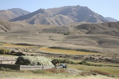 Hay Harvesting Autumn Landscape High Mountain Summer Pastures Kyrgyzstan Central Asia (eriagn) Tags: blue truck hay fodder people livliehood livestock seminomadic horse sheep cattle goat building dwelling red van dirtroad summerpastures rural remote mountainous valley climate habitat asia centralasia kyrgyzstan yurt mountain frame wood sticks portable eriagn canon travel traditional nomad nomadic gettyimages landscape shadows ngairelawson travelphotography structure texture sky summer autumn agriculture tianshan silkroad threadsinthesand ethnic kyrgyz ngairehart eos