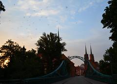 Most Tumski, Wrocław, Poland