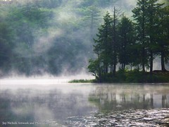 Ridge Road Morning Mist (joyolsonnichols) Tags: trees light mist reflection green nature wet water beautiful beauty misty fog woodland landscape outdoors island photography dawn early still pond haze woods glow quiet peace shine view natural awakening vibrant magic maine shoreline foggy peaceful atmosphere calm pines silence serenity summertime idyllic tranquil beams fayette wetland nichols kennebeccounty mosherpond joynicholsartworkandphotography