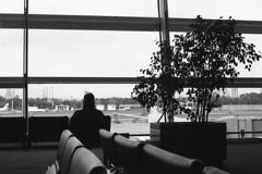 (intivisible) Tags: blackandwhite bw plant man planta byn blancoynegro film window 35mm person persona airport analgica bn figure tmax400 aeropuerto hombre analogic figura ventanal prakticamtl3