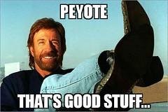 Peyote meme (dylan.unknown5150) Tags: eye good meme health stuff third chuck thats peyote meditation healing norris mescaline psychedelics