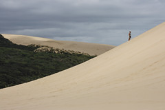 A long Way Up (fantommst) Tags: newzealand woman clouds landscape island person sand cloudy dunes north large nz northland uphill tepaki lisaridings fantommst